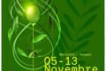 FèXtra, Festa dell'extravergine d'oliva 2021